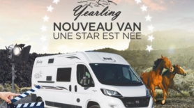 Yearling Van de McLouis : Une star est née